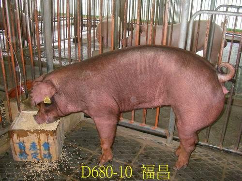 中央畜產會200505期D0680-10拍賣照片