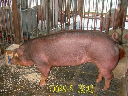 中央畜產會200505期D0689-05拍賣照片