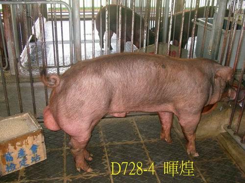 中央畜產會200505期D0728-04拍賣照片