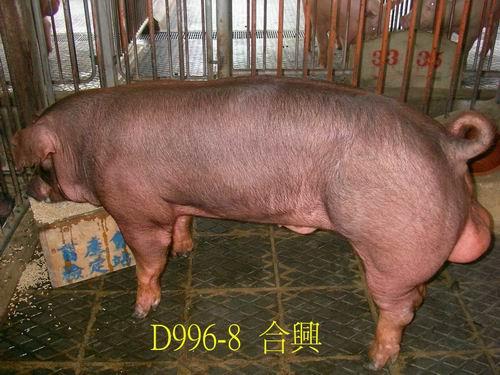 中央畜產會200505期D0996-08拍賣照片