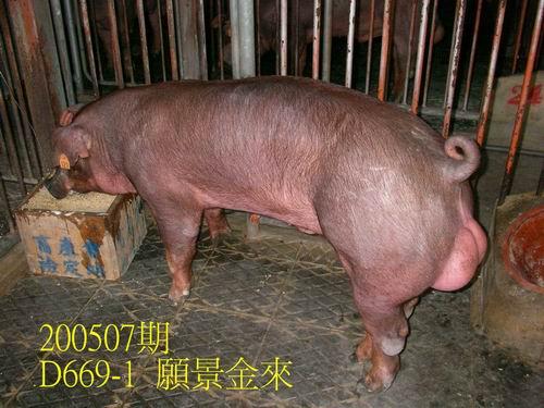 中央畜產會200507期D0669-01拍賣相片