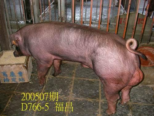 中央畜產會200507期D0766-05拍賣相片