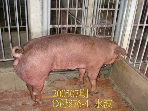 中央畜產會200507期D0876-04拍賣相片