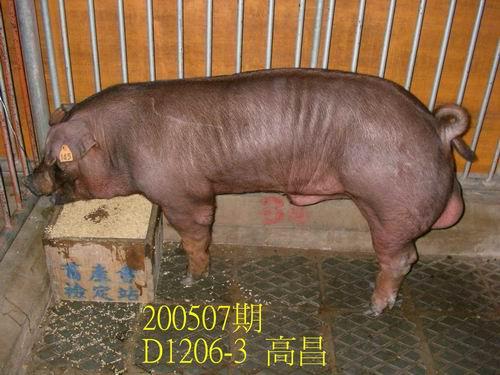 中央畜產會200507期D1206-03拍賣相片