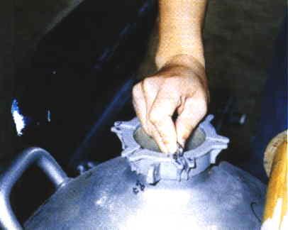 羊人工授精操作過程 - 授精技術(1)