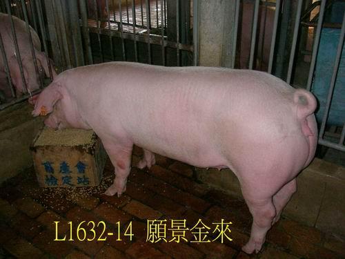 中央畜產會200505期L1632-14拍賣照片