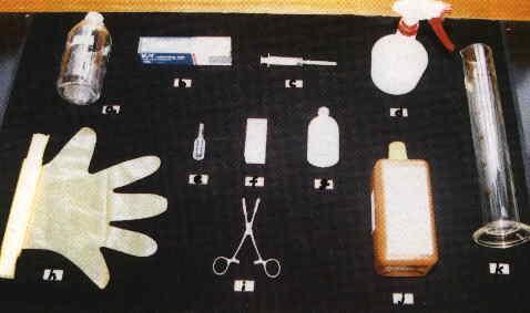 胚採集之一般用品