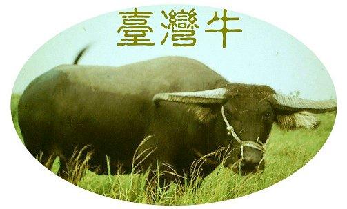 台灣牛圖像 (APEC2003 p45)