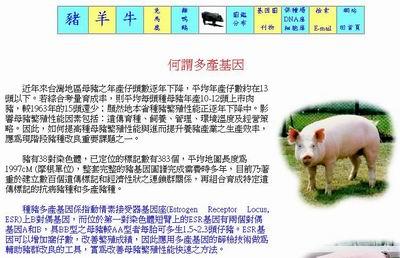 網路養豬-種豬多產基因之檢測/何謂多產基因  p18